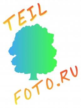 TEIL- FOTO