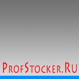 Энциклопедия микростоков ProfStocker.ru
