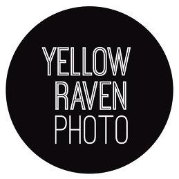 Yellow Raven Photo