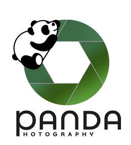 Panda Studia