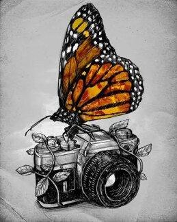 Михаил Манеев
