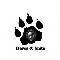 Darea&Shita Творческий альянс