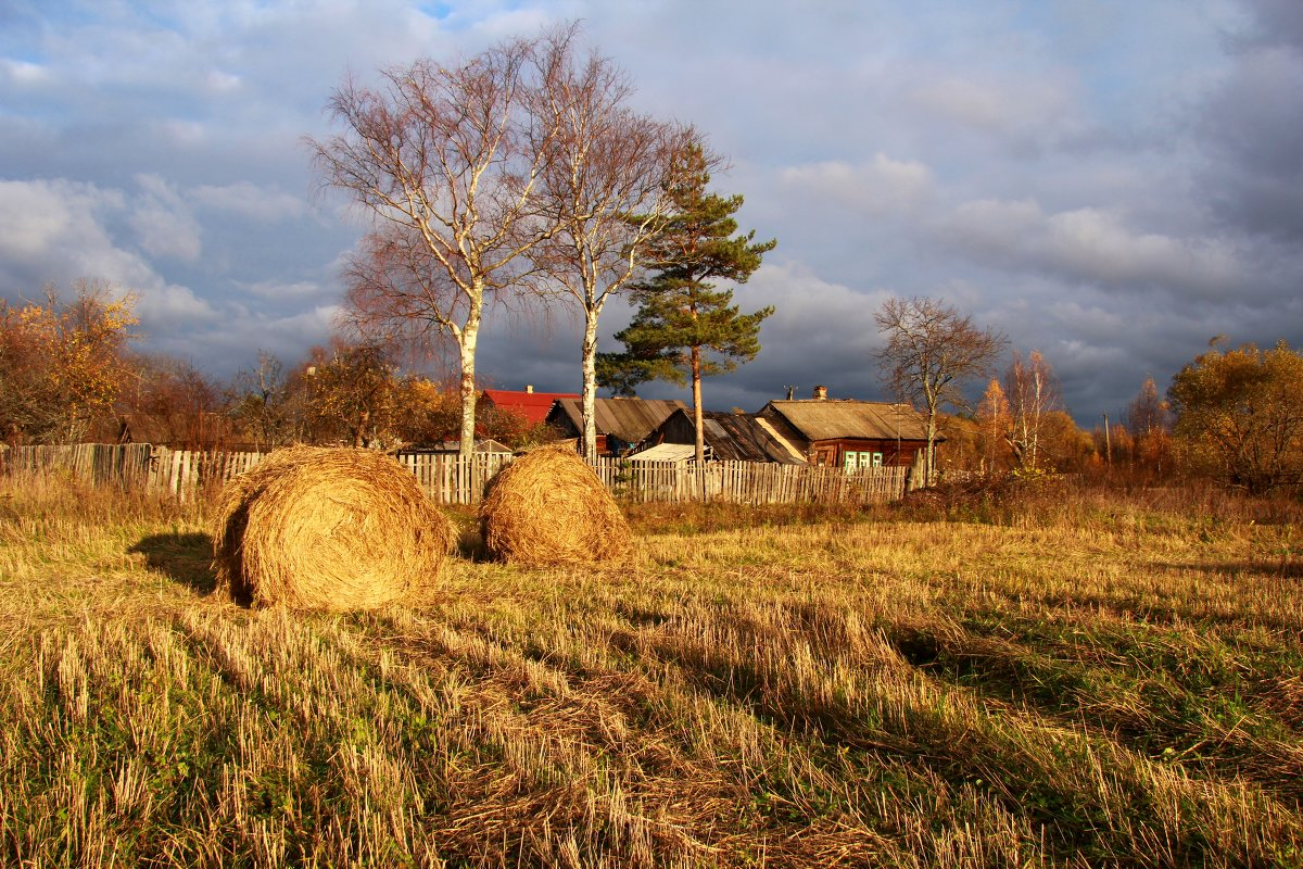 Несколько солнечных мгновений - Наталья Серегина