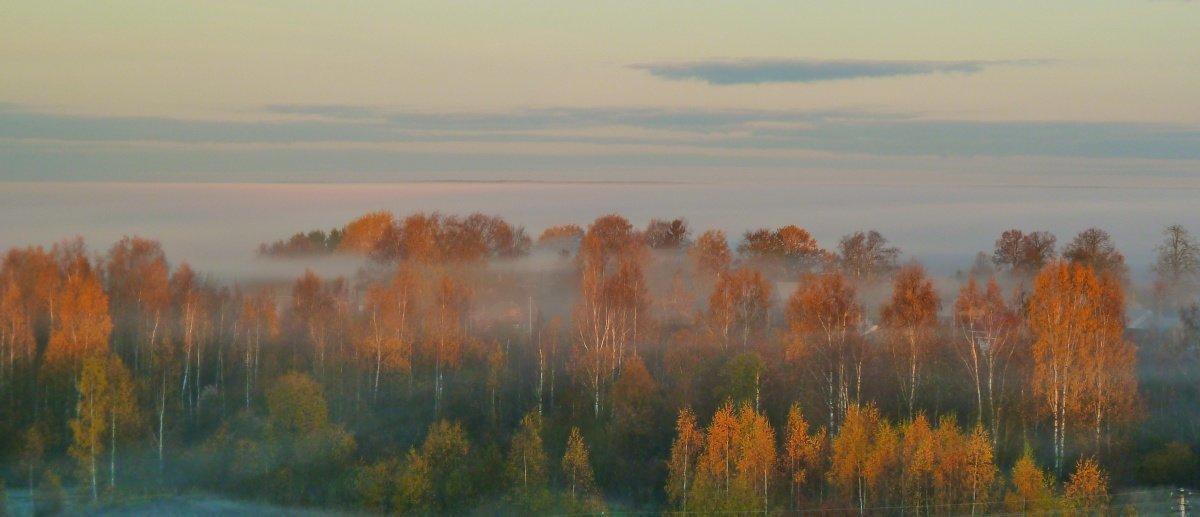 Осень из моего окошка. - Виктор Осипчук