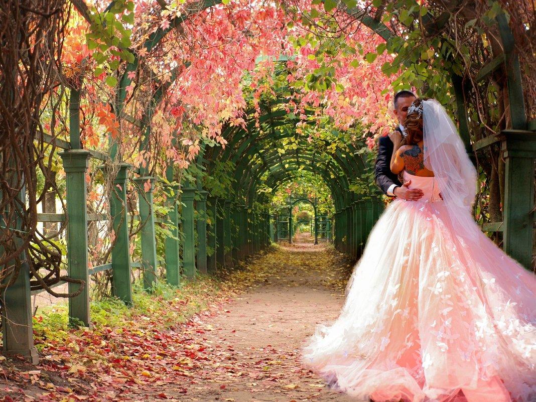 Влюблённые в райском саду - Ирина