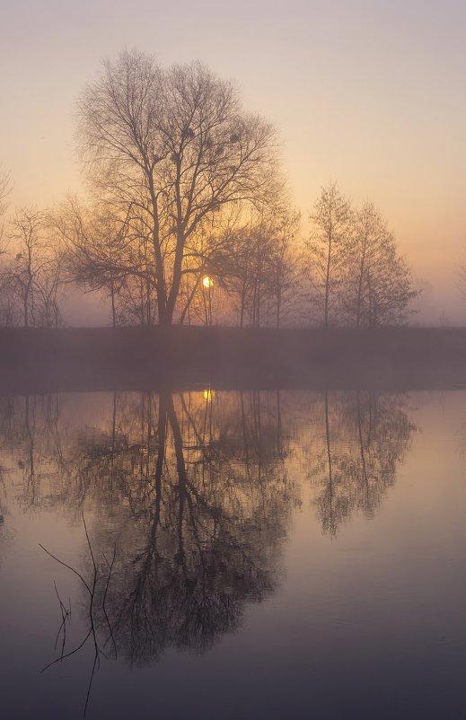Зеркальное отражение - Сергей Корнев