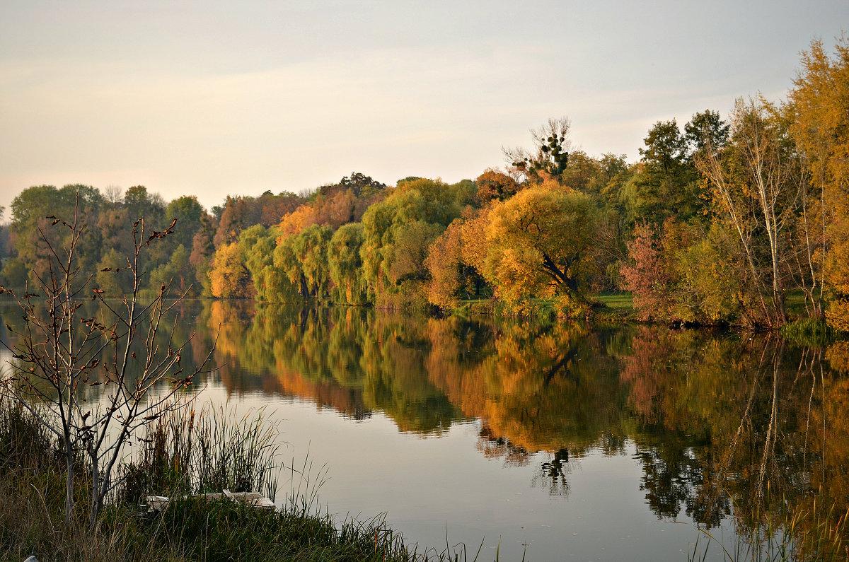 Осень красой отразилась в реке... - Валентина Данилова