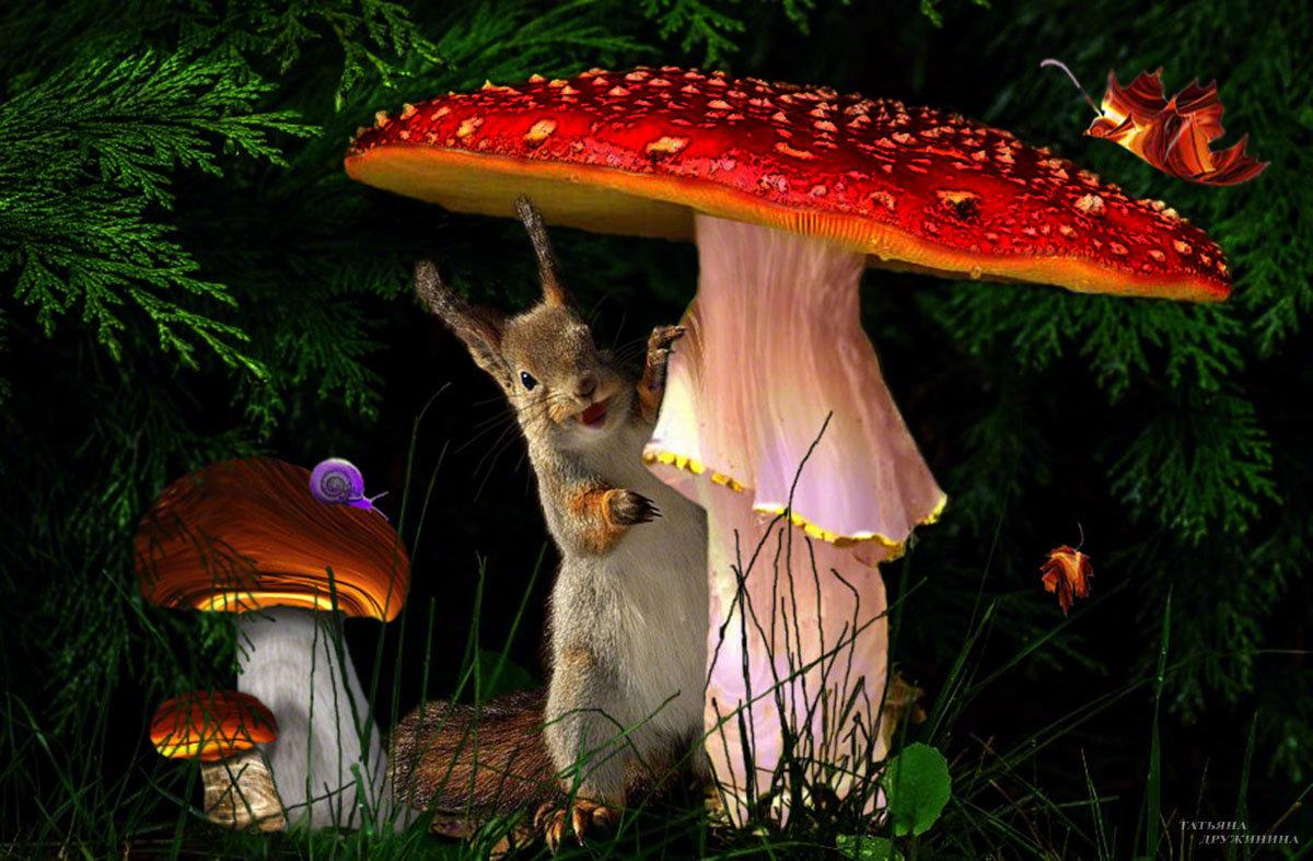 В сказочном лесу - Татьяна Дружинина