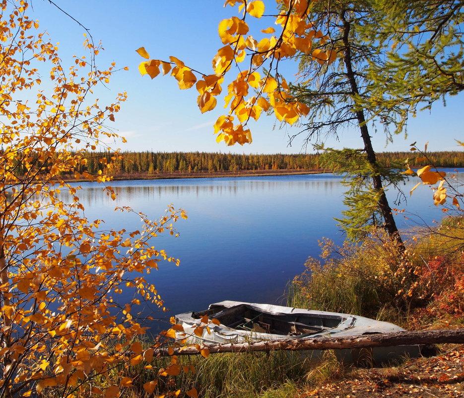 Утро на озере - ГАЛИНА Баранова