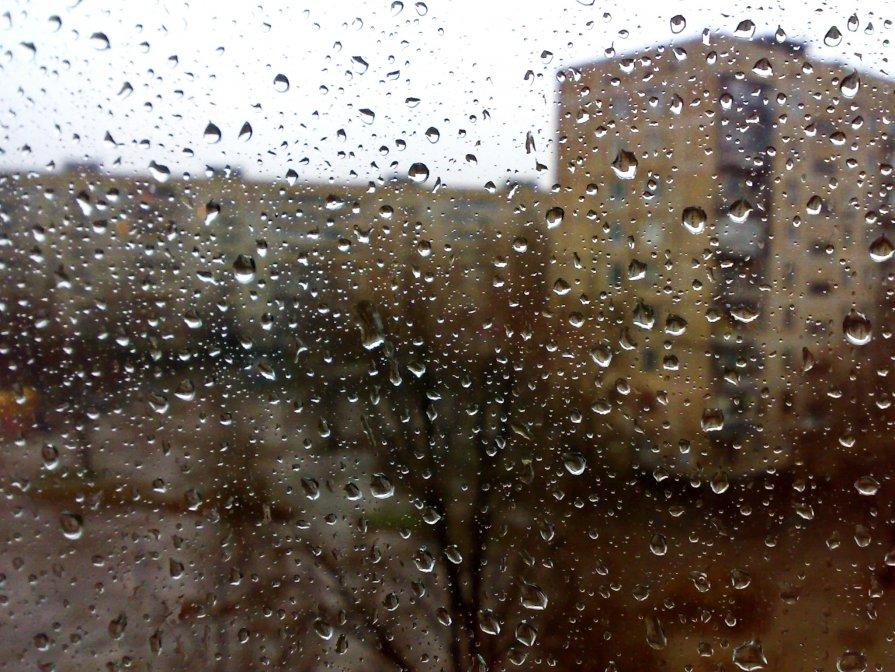 Осенний дождь вид из окна дмитрий