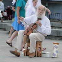 Старый музыкант :: Елена Григорьева