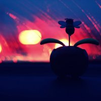 счастье в мелочах :: Helly Safronova