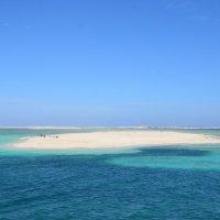 остров Утопия  Египет :: наталья Дубовая