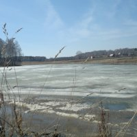Весна в деревне. :: евгения Усольцева