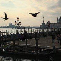 Венеция :: Татьяна Грицаева