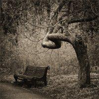 в парке старом :: Сергей Мигунов