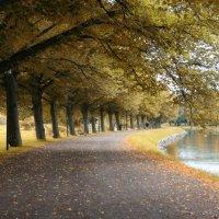 Парк Стокгольма (После) :: Артем Селезнев