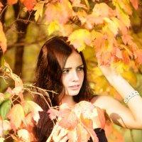 Осень :: Денис Бунтуков