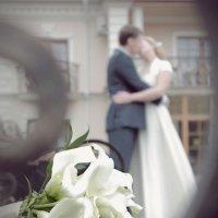 Романтическая любовь :: Дмитрий Малий