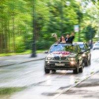 Вперед! В будущее! :: Александр Кузин