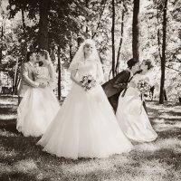 свадебное трио :: Евгений Петрикин
