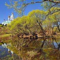 Майский пейзаж... :: Александр Кукринов