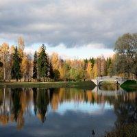 Тишина. :: Андрей Гирман