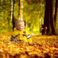 Осень :: Евгения Карпова