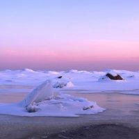 Весна на Финском заливе :: Максим Судаков
