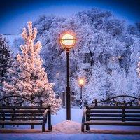 Приглашение к зиме... :: Nadia Sergeeva