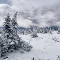 Непогода :: Владимир Кочкин