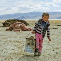 Детство в Монголии :: Дмитрий Борисов