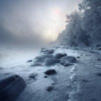 Территория зимы :: Люба Трифонова