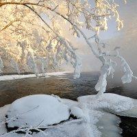 С морозом обвенчана :: Andrey K.