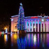 Новый Год в Одессе..) :: Лилия Багирова
