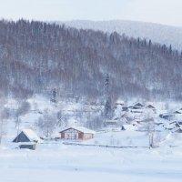 Заснеженная деревня в горах Кузнецкого Алатау :: Екатерина Кольцова