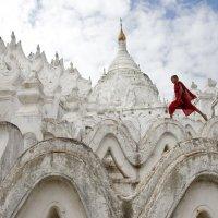 Маленький монах на стенах пагоды.. :: Олег Грачёв