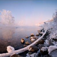 Фрагмент морозного утра / :: Влад Соколовский