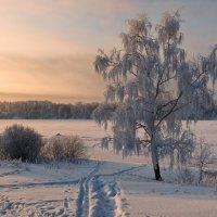 Рассветный берег :: Николай Белавин