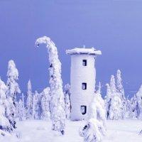 Зимняя сказка :: Валерий Кондрашов