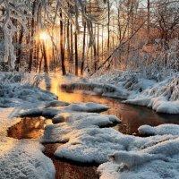 Чародейкою зимою околдован лес стоит... :: Николай Привалов