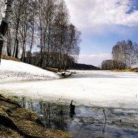 Времена года  Несрочная весна :: Сергей Коновалов
