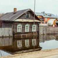 Потоп :: Денис Толстов