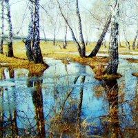 Весна пришла :: николай матюшенков