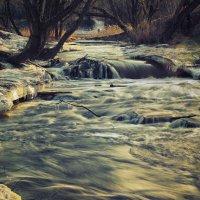 Большая вода :: Владимир Колесников