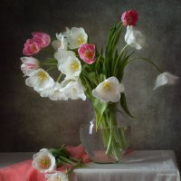 """Тюльпаны - улыбка весны..."" :: Alina Lankina"