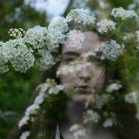 Весна :: Olga Berngard