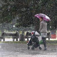 Под дождём :: алексей миротин