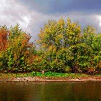Осень :: Татьяна Королёва