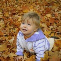 На ковре из желтых листьев :: Милада Шестопалова